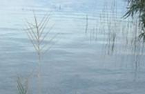 Τριχωνίδα, παραλίμνια τοποθεσία στον Αη-Γιώργη
